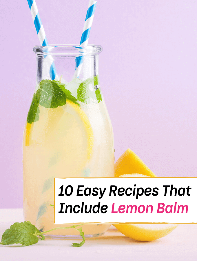 10 Fantastic Recipes That Include the Use of Lemon Balm - Everything Abode