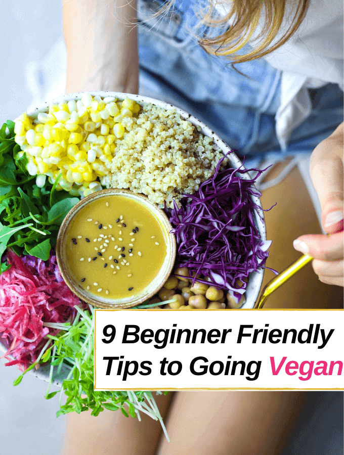 9 Beginner Friendly Tips to Going Vegan- Everything Abode