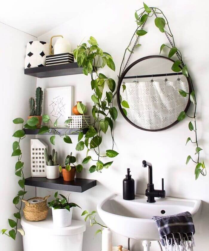 Plants are a boho's best friend