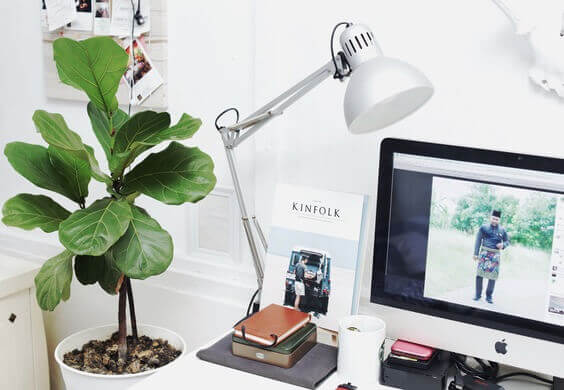 Buy Some Plants if you work from home via @everythingabode