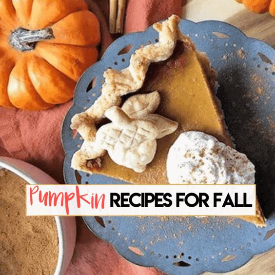 Pumpkin recipes for fall via @everythingabode
