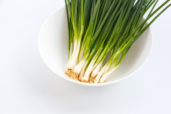 How to regrow Green Onions in a jar, growing veggies from scraps