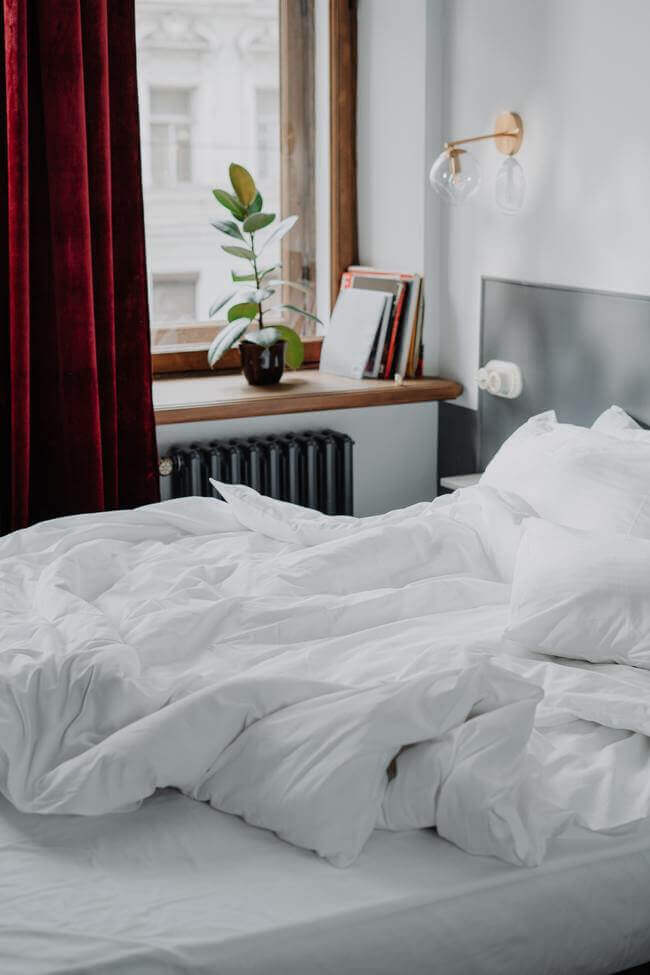 6 Healthy Bedroom Plants That'll Improve Your Sleep --- Everything Abode -- plants