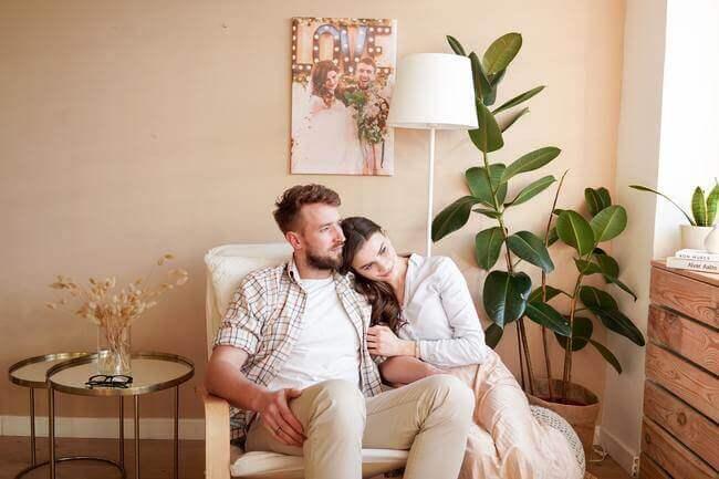 lucky houseplants - partnership - Everything Abode