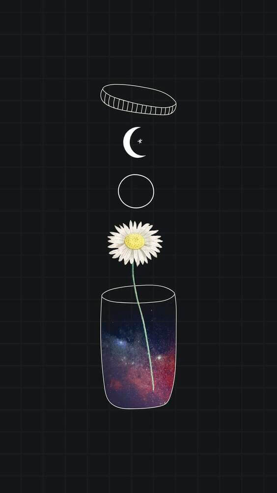 dark wallpaper, flower wallpaper, iphone wallpaper, wallpaper background
