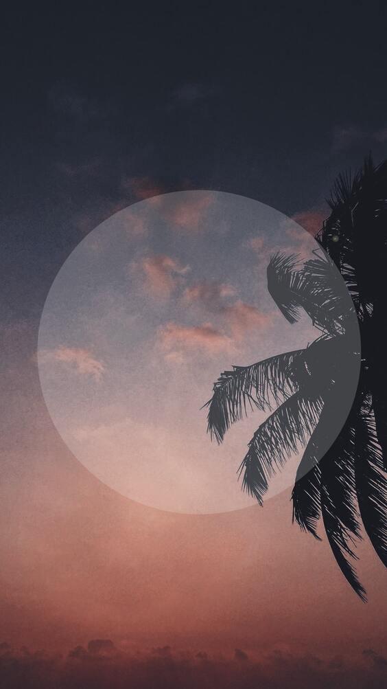 Summer dark mobile wallpaper, black wallpaper for iphone