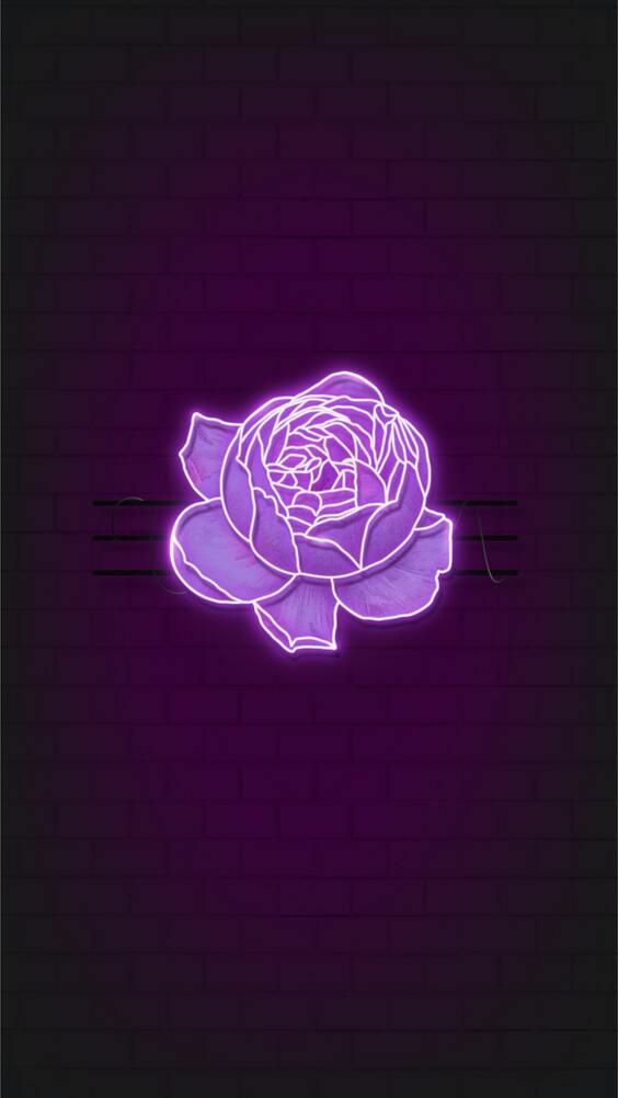 Neon purple flower black wallpaper, neon iphone wallpaper, Free Dark Mobile