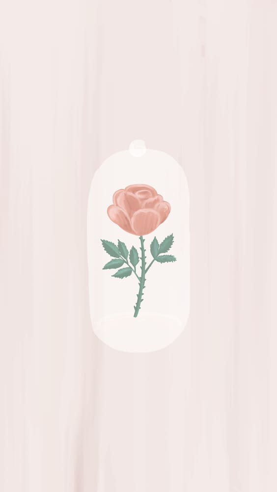 cute pink rose phone background