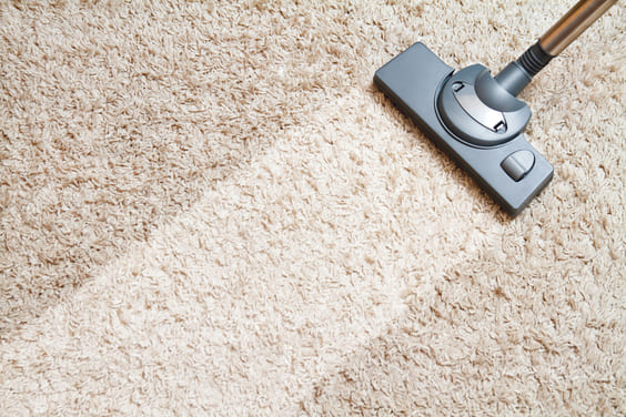 vacuum to keep your home smelling great
